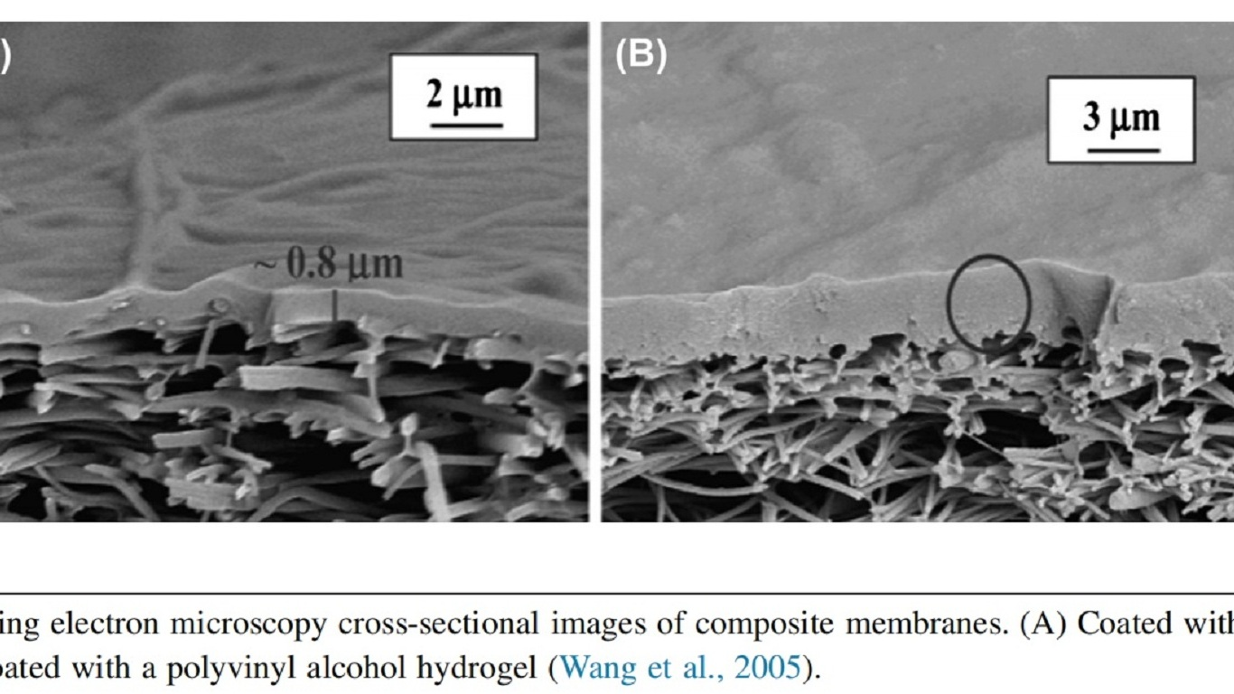 Typical scanning electron microscopy cross-sectional images of composite membranes.
