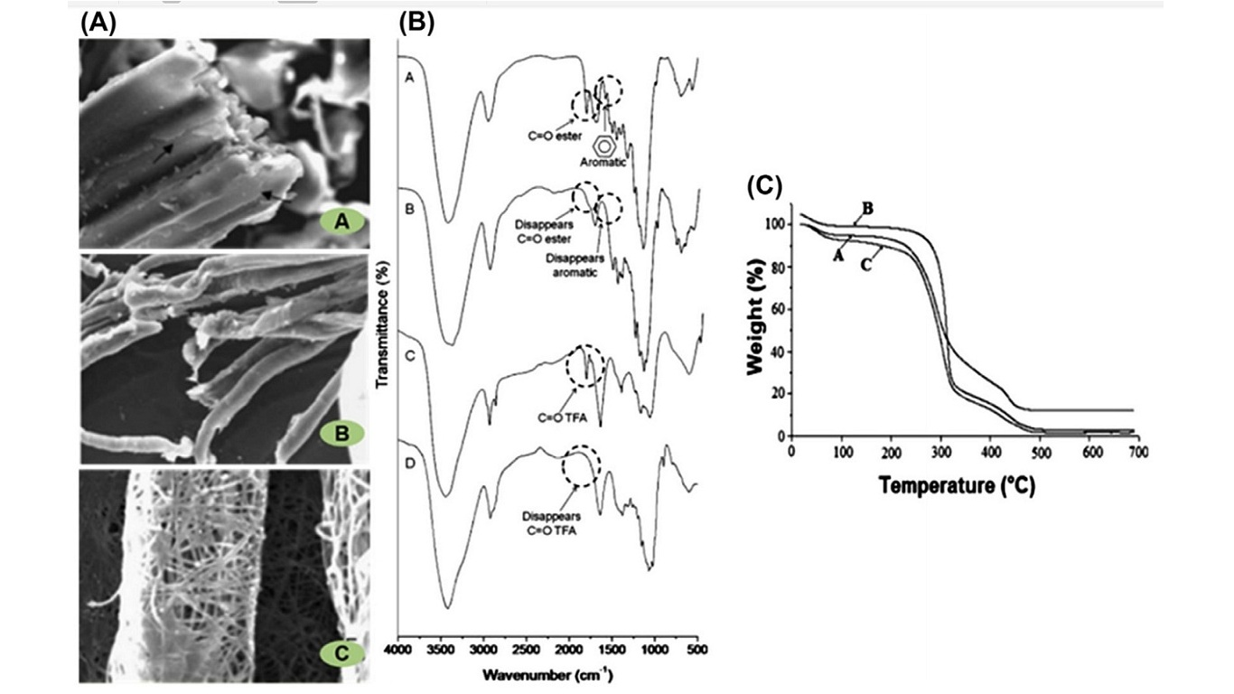 (A) Scanning electron microscopy images, (B) Fourier transform infrared spectra, and (C) thermal gravimetric analysis of (image A) durum wheat straw, (image B) cellulose fibers after chemical treatment, and (image C) cellulose nanofibers. Trace D in (B) is for nanofibers after being exposed to air. TFA, trifluoroacetate.