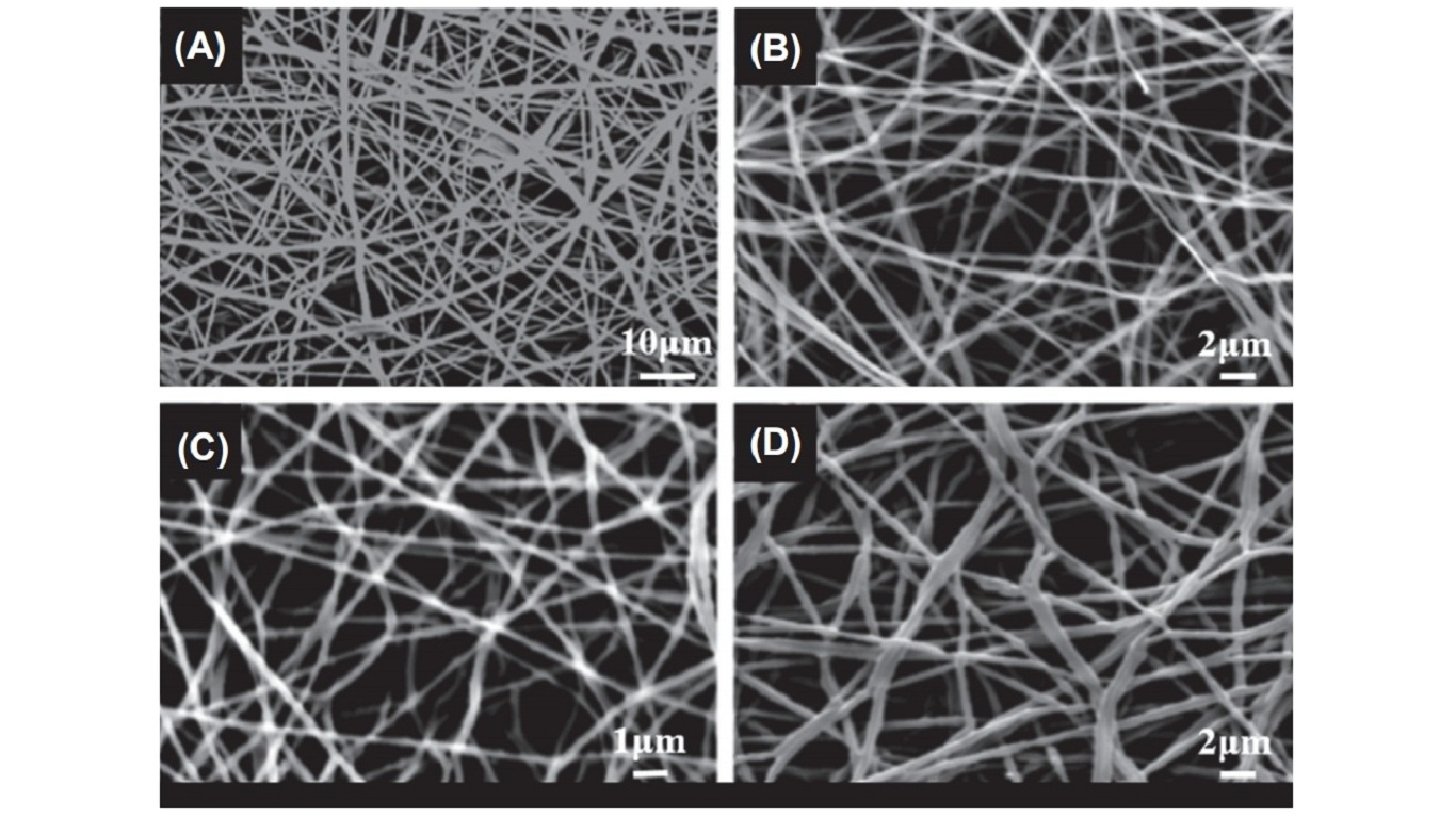Scanning electron microscopy (SEM) images of electrospun mats from 10% polyvinyl alcohol/casein solution at